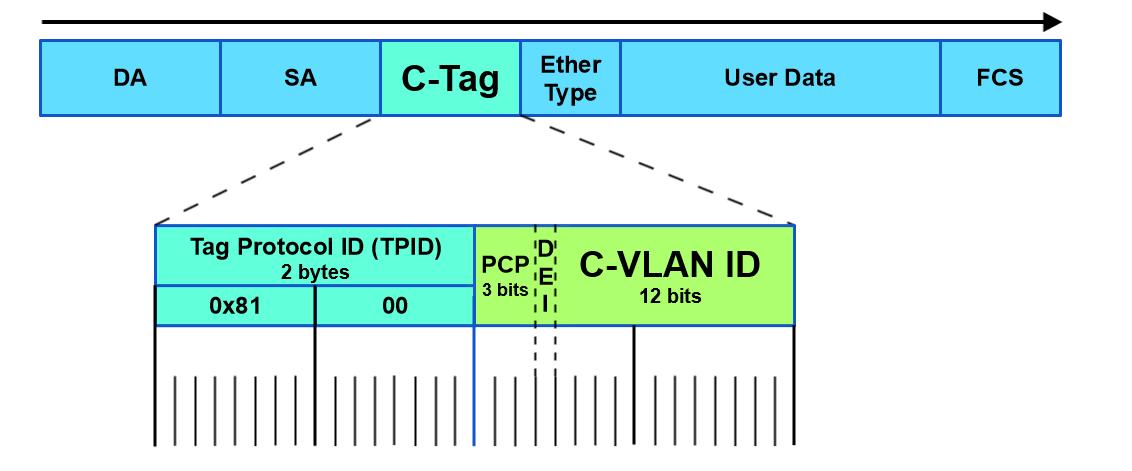 Customer Bridged Networks - MEF Reference Wiki - MEF Wiki